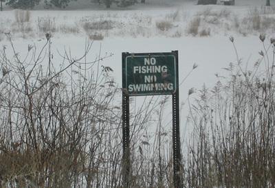 Nofishing_1